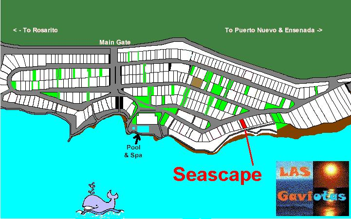 MAP-seascape
