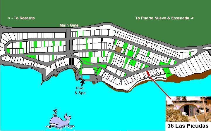 map-36picudas