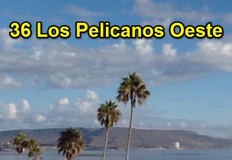 36LosPelicanosOeste-banner